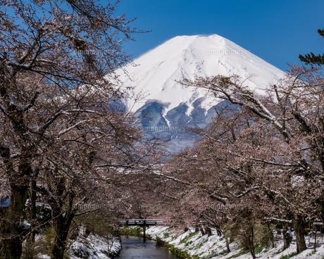富士山の写真素材 [FYI04627740]