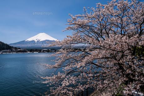 富士山の写真素材 [FYI04627742]