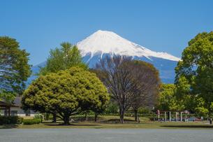 富士山の写真素材 [FYI04627745]