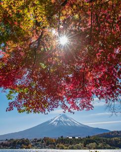 富士山の写真素材 [FYI04627765]