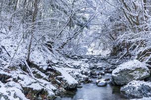 檜原村 龍神の滝付近の雪景色の写真素材 [FYI04627822]