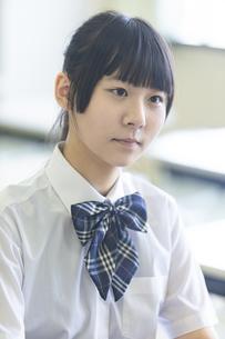 勉強する女子高生の写真素材 [FYI04627864]