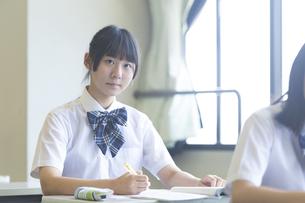 勉強する女子高生の写真素材 [FYI04627876]