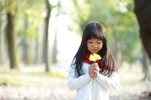 いちょうの葉を持つ少女の写真素材 [FYI04627900]