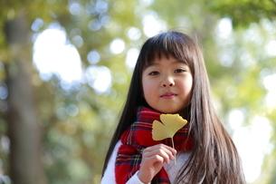 いちょうの葉を持つ少女の写真素材 [FYI04627901]