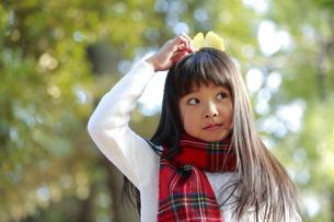 いちょうの葉を頭に乗せる少女の写真素材 [FYI04627902]