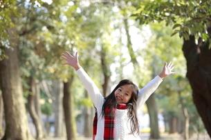 森の中で両手をあげてはしゃぐ女の子の写真素材 [FYI04627907]