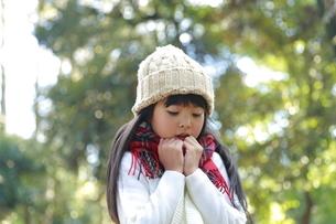 ニット帽をかぶった寒そうな仕草の少女の写真素材 [FYI04627931]