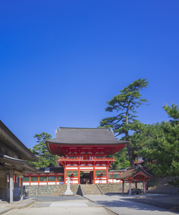 島根県  風景 日御碕神社の写真素材 [FYI04628143]