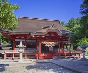 島根県  風景 日御碕神社の写真素材 [FYI04628151]