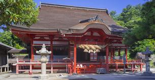 島根県  風景 日御碕神社の写真素材 [FYI04628153]