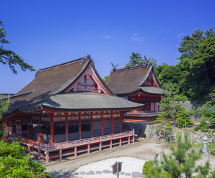 島根県  風景 日御碕神社の写真素材 [FYI04628154]