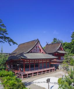 島根県  風景 日御碕神社の写真素材 [FYI04628156]