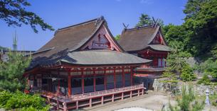 島根県  風景 日御碕神社の写真素材 [FYI04628159]