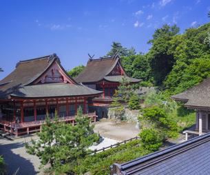 島根県  風景 日御碕神社の写真素材 [FYI04628161]