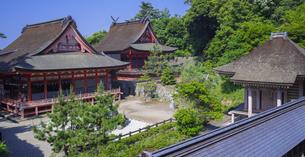 島根県  風景 日御碕神社の写真素材 [FYI04628166]