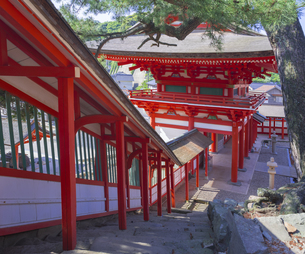 島根県  風景 日御碕神社の写真素材 [FYI04628167]