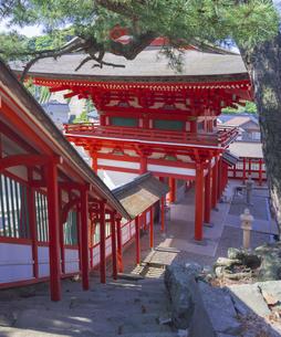 島根県  風景 日御碕神社の写真素材 [FYI04628169]