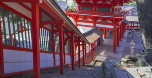 島根県  風景 日御碕神社の写真素材 [FYI04628171]