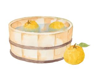 柚子と風呂桶の水彩画のイラスト素材 [FYI04628198]