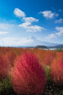 富士山の写真素材 [FYI04628341]