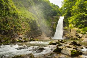 秋保大滝の写真素材 [FYI04628492]