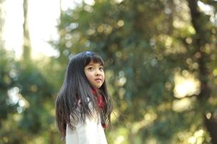 森の中で空を見上げる女の子の写真素材 [FYI04628493]