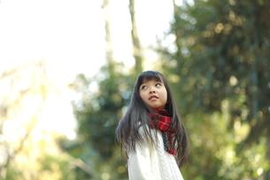 森の中で振り返り空を見上げる女の子の写真素材 [FYI04628494]