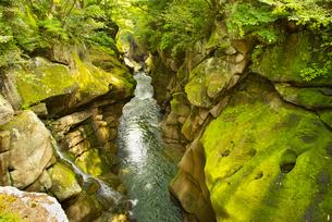 磊々峡の写真素材 [FYI04628510]