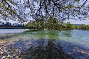 天橋立 大天橋と松並木の写真素材 [FYI04628564]