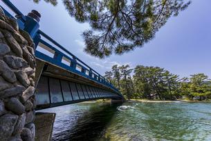 天橋立 大天橋と松並木の写真素材 [FYI04628565]