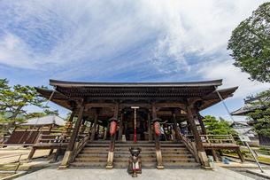 智恩寺 文殊堂正面の写真素材 [FYI04628605]