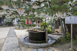 知恩寺 かつて湯船として使用されていた鉄湯船(手水鉢)の写真素材 [FYI04628606]