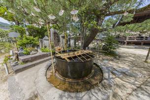 知恩寺 かつて湯船として使用されていた鉄湯船(手水鉢)の写真素材 [FYI04628610]