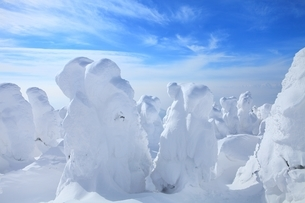 蔵王の樹氷の写真素材 [FYI04628717]