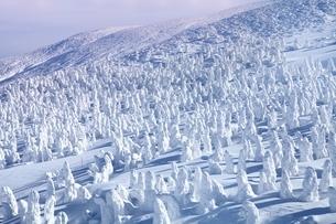 蔵王の樹氷夕景の写真素材 [FYI04628718]
