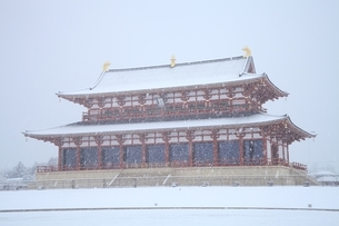 降雪の平城宮跡の写真素材 [FYI04628726]