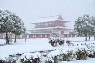 降雪の平城宮跡の写真素材 [FYI04628727]