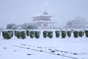 降雪の平城宮跡の写真素材 [FYI04628728]
