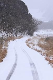 山里の雪道の写真素材 [FYI04628763]