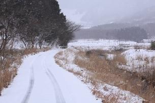 山里の雪道の写真素材 [FYI04628764]