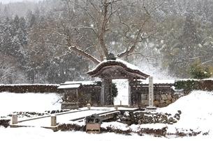 降雪の一乗谷朝倉氏遺跡の写真素材 [FYI04628775]