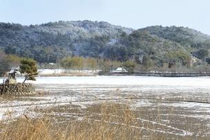 雪の広沢池の写真素材 [FYI04628798]