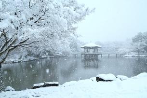 雪の奈良公園 鷺池と浮見堂の写真素材 [FYI04628804]