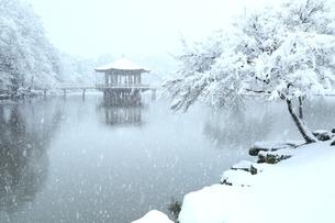雪の奈良公園 鷺池と浮見堂の写真素材 [FYI04628805]