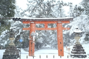 雪の奈良公園 一之鳥居の写真素材 [FYI04628806]