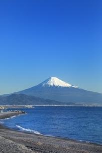 三保の松原と富士山の写真素材 [FYI04628821]