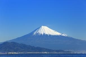 三保の松原と富士山の写真素材 [FYI04628823]