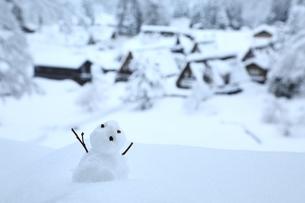 雪の相倉合掌造り集落の写真素材 [FYI04628828]