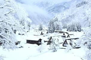 雪の相倉合掌造り集落の写真素材 [FYI04628832]